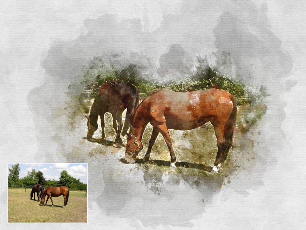 Aquarell Pferde