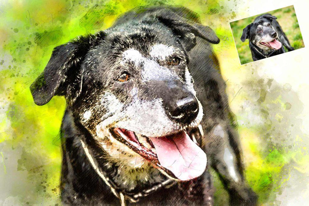 Gemälde vom Hund günstig