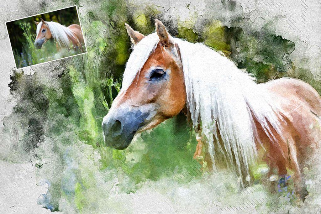 Tierportrait nach Foto - Pferd
