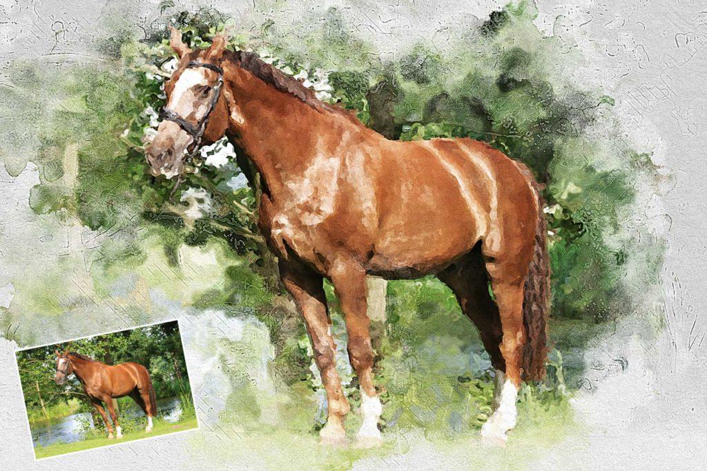 Zeichnung Pferd - Tierzeichnung malen lassen